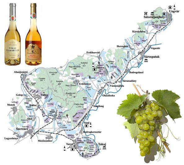 Tokaj-Hegyalja térkép